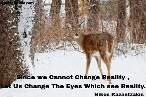 change image quote