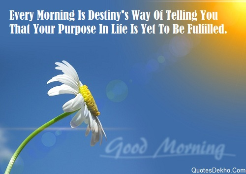 Good Morning Image Quotes Life DP Wallpaper
