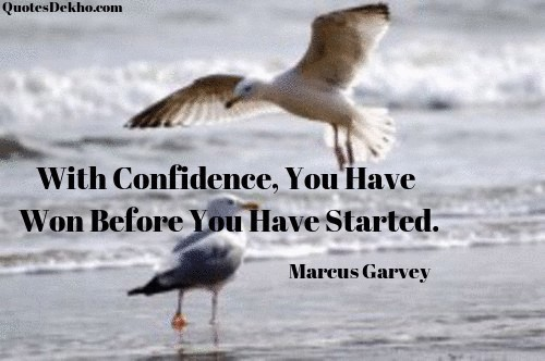 Confidence Success Quotes With Image