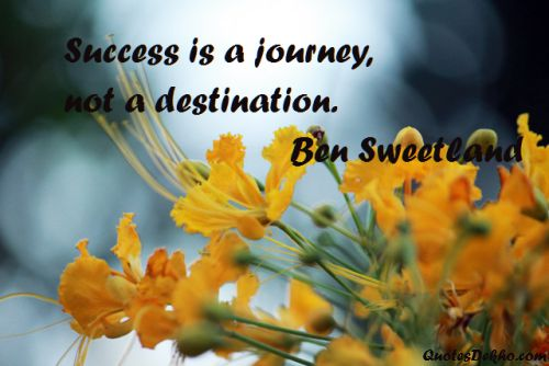 success saying and quote pic