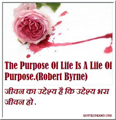 Life Purpose Quote In Hindi And English