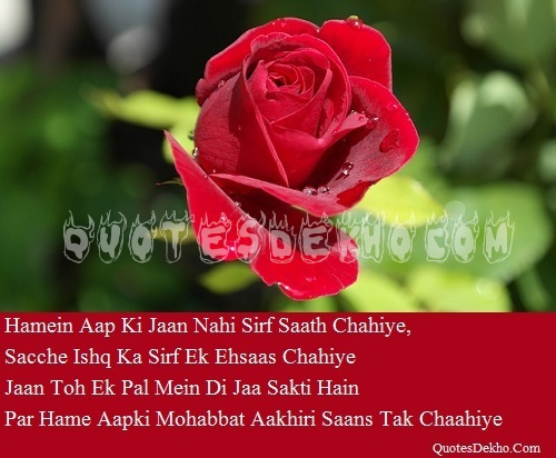 Mohabbat Quotes In Hindi And Love Saying Wallpaper