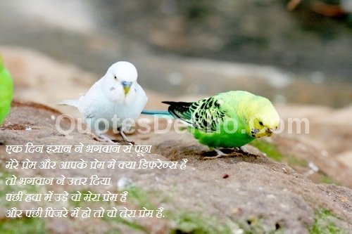 Love Saying Hindi Quotes