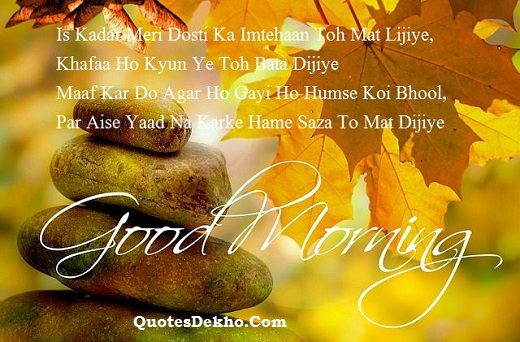 good morning sorry saying hindi shayari picture
