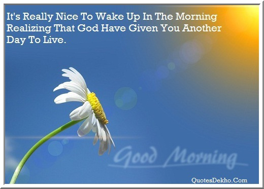Good Morning Nice Greetings Status