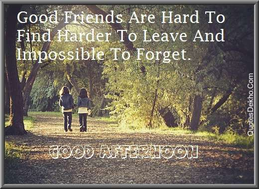 good afternoon friendship status wallpaper