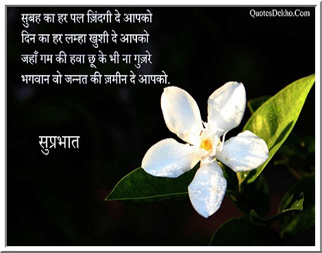 suprabhat facebook shayari wallpaper