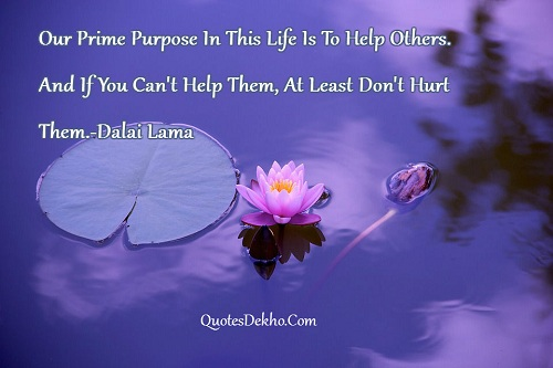 Dalai Lama Life Purpose Picture Whatsapp And Facebook Share