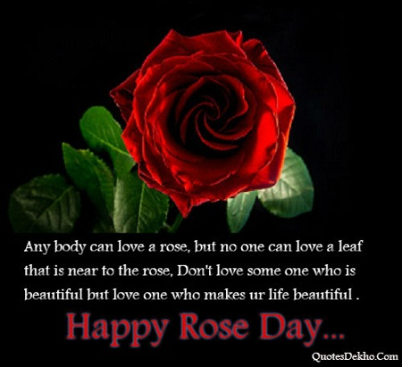 Happy Rose Day Status With Wallpaper