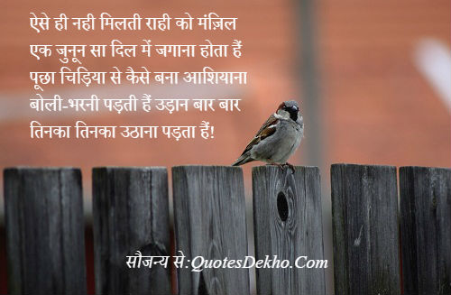 Motivational Shayari For Youth