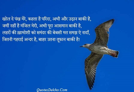 motivational quotes shayari wallpaper whatsapp and facebook share